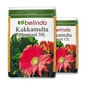 Belinda Kukkamulta