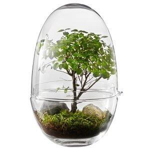 Design House Stockholm Grow Minikasvihuone Xl