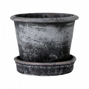Ellos Timjan Ruukku Korkeus Aluslautasen Kanssa Harmaa 15 Cm