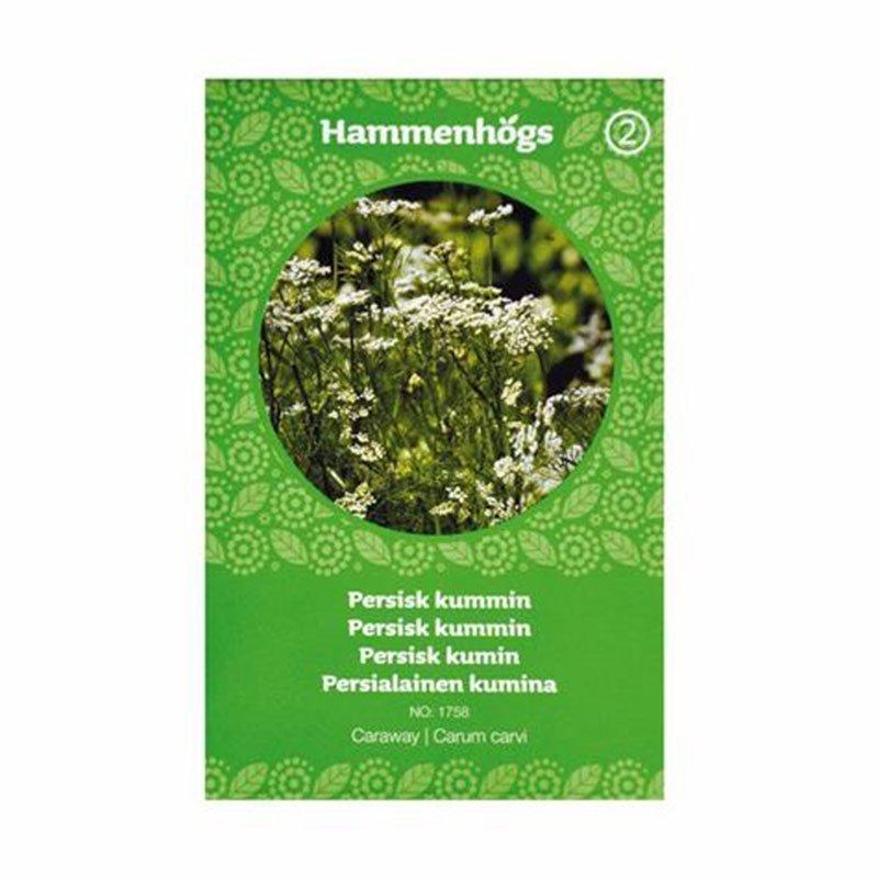 Hammenhögs Siemenpussi Persialainen kumina