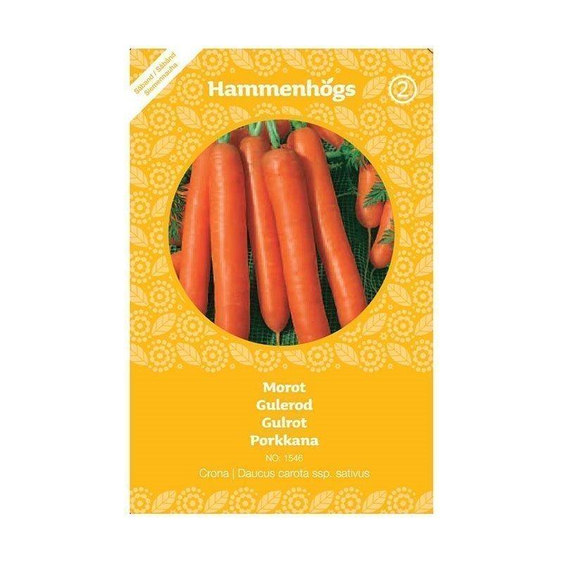 Hammenhögs Siemenpussi Porkkana chantel