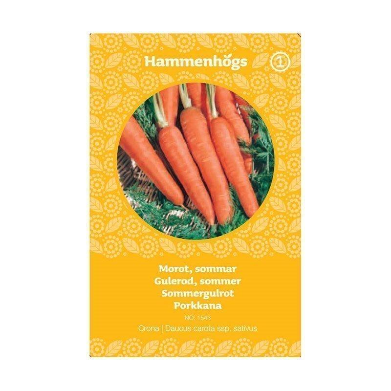 Hammenhögs Siemenpussi Porkkana nantaise