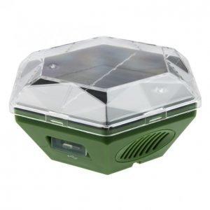 Isotronic Solar Linnunkarkotin