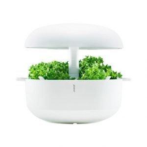 Plantui 6 Smart Garden Sisäpuutarha