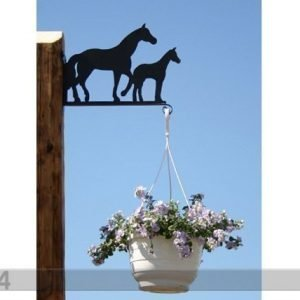 Rh Ampellipidike Hevonen