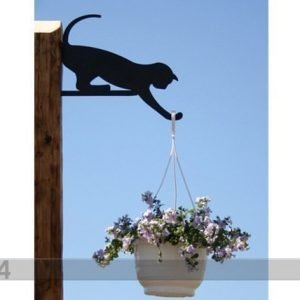 Rh Amppelipidike Kissa