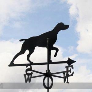 Rh Tuuliviiri Koira