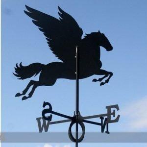 Rh Tuuliviiri Pegasus