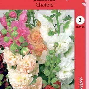 Siemen Alcea Rosea Chaters Tarhasalkoruusu Sekoite