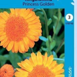 Siemen Calendula Officinalis Prinzess Golden Tarhakehäkukka