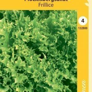 Siemen Frillice Rapea Salaatti