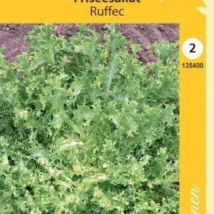 Siemen Frisee-Salaatti Ruffec