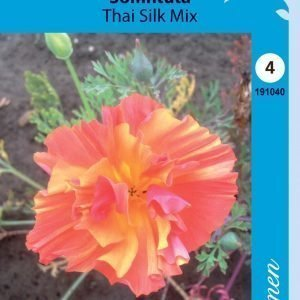 Siemen Kaliforniantuliunikko Thai Silk Mixed