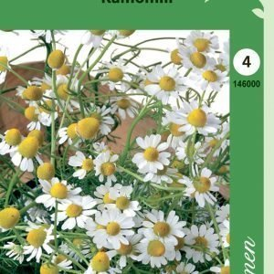 Siemen Kamomillasaunio( Matricaria)