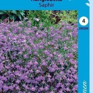 Siemen Lobelia Erinus Pendula Saphir Riippalobelia Saphir
