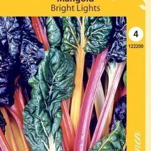 Siemen Mangoldi Bright Lights