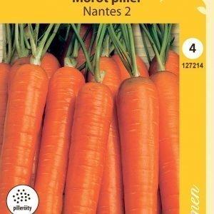 Siemen Nantes 6 Fancy Porkkana