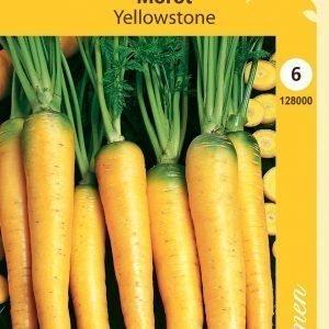 Siemen Porkkana Yellowstone