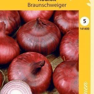 Siemen Punasipuli Braunschweiger