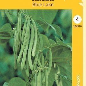 Siemen Salkopapu Blue Lake