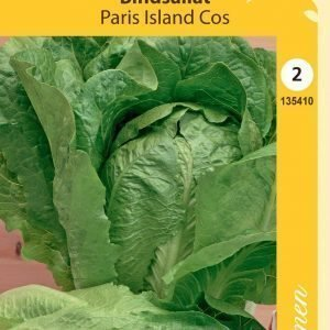 Siemen Sidesalaatti Paris Island Cos