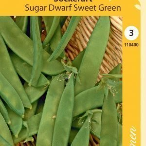 Siemen Sugar Dwarf Sweet Green Sokeriherne