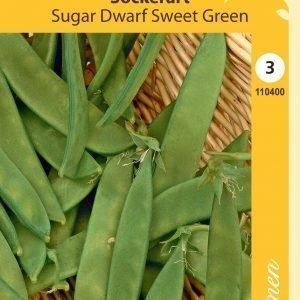 Siemen Sugar Dwarf Sweet Green Sokeriherne