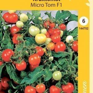 Siemen Tomaatti Micro Tom