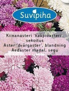 Suvipiha Callistephus