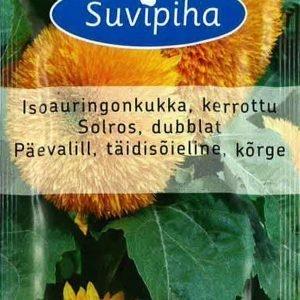 Suvipiha Helianthus