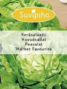 Suvipiha Keräsalaatti Market Favourite