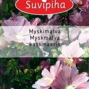 Suvipiha Malva Moschata