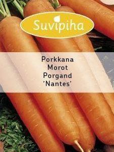Suvipiha Porkkana Nantes