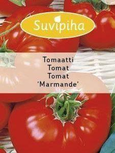 Suvipiha Tomaatti Marmande