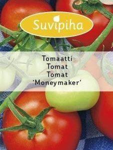 Suvipiha Tomaatti Moneymaker