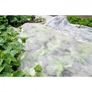 Tok Garden Kateharso 1